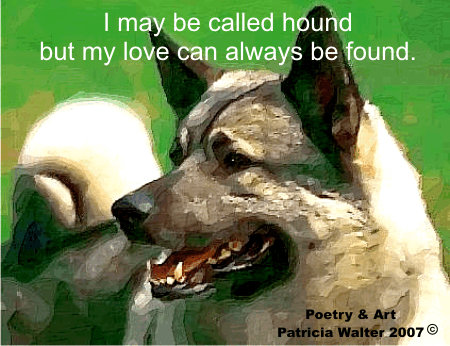 Elkhound - I may be call hounds, but my love can always be found.