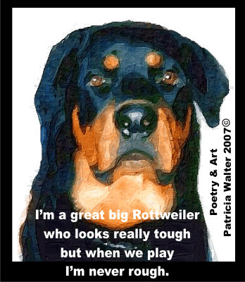 I'm a great big Rottweiler who looks really tough, but when we play, I'm never rough.