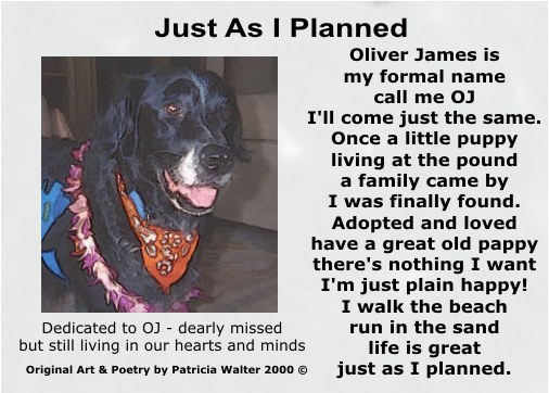 Just As I Planned Oliver James is my formal name call me OJ, I'll come just the same. Once a little puppy, living at the pound a family came by, I was finally found. Adopted and loved, have a great old pappy There's nothing I want, I'm just plain happy! I walk the beach, run in the sand life is great, just as I planned. Dedicated to OJ, dearly missed buy sill living in our hearts. Poetry & Art by Patricia Walter 2000 ©