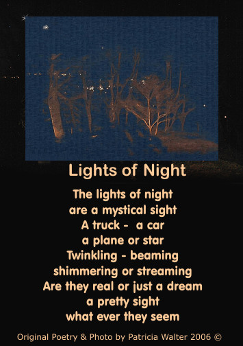 Lights of Night poetry & art by Patricia Walter
