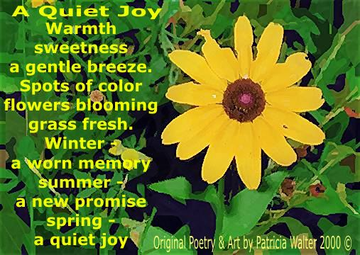 A Quiet Joy Warmth sweetness a gentle breeze. Spots of color flower blooming grass fresh. Winter a worn memory summer - a new promis spring - a quiet joy. Poetry and Art bby Patricia Walter 2000