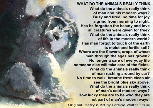 What Do The Animals Really Think - original poetry by Patricia Walter