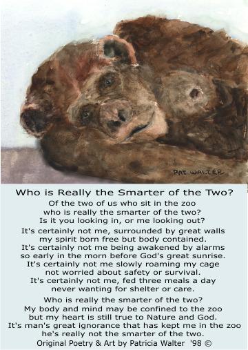 Who Is The Smarter Of The Two - original poetry by Patricia Walter