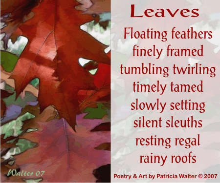 Leaves Poem by Patricia Walter 2007